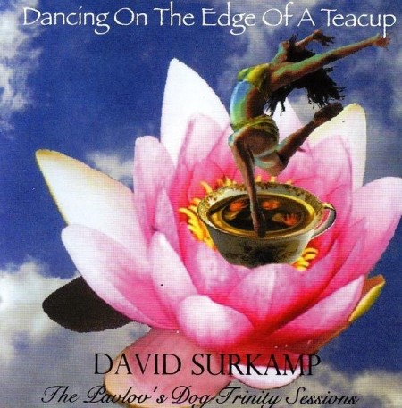 David Surkamp - Dancing On The Edge Of A Teacup (2007) FLAC